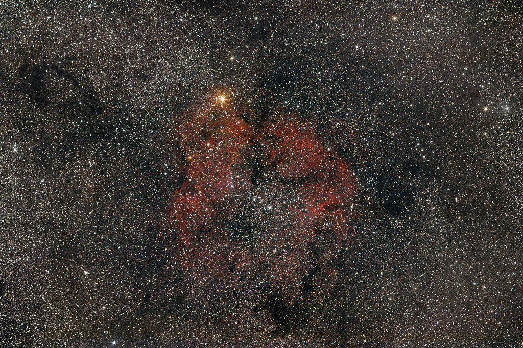 Elephants Trunk (IC1396)